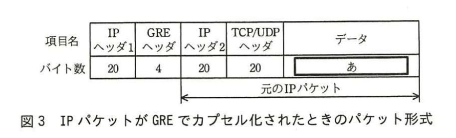 【ネスペ】GREでカプセル化されたパケット形式